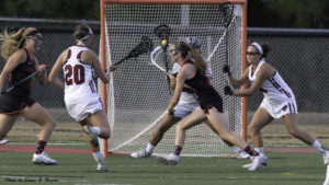 Panthers Pounce on Molloy in Opener